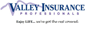 valley-insurance-professionals
